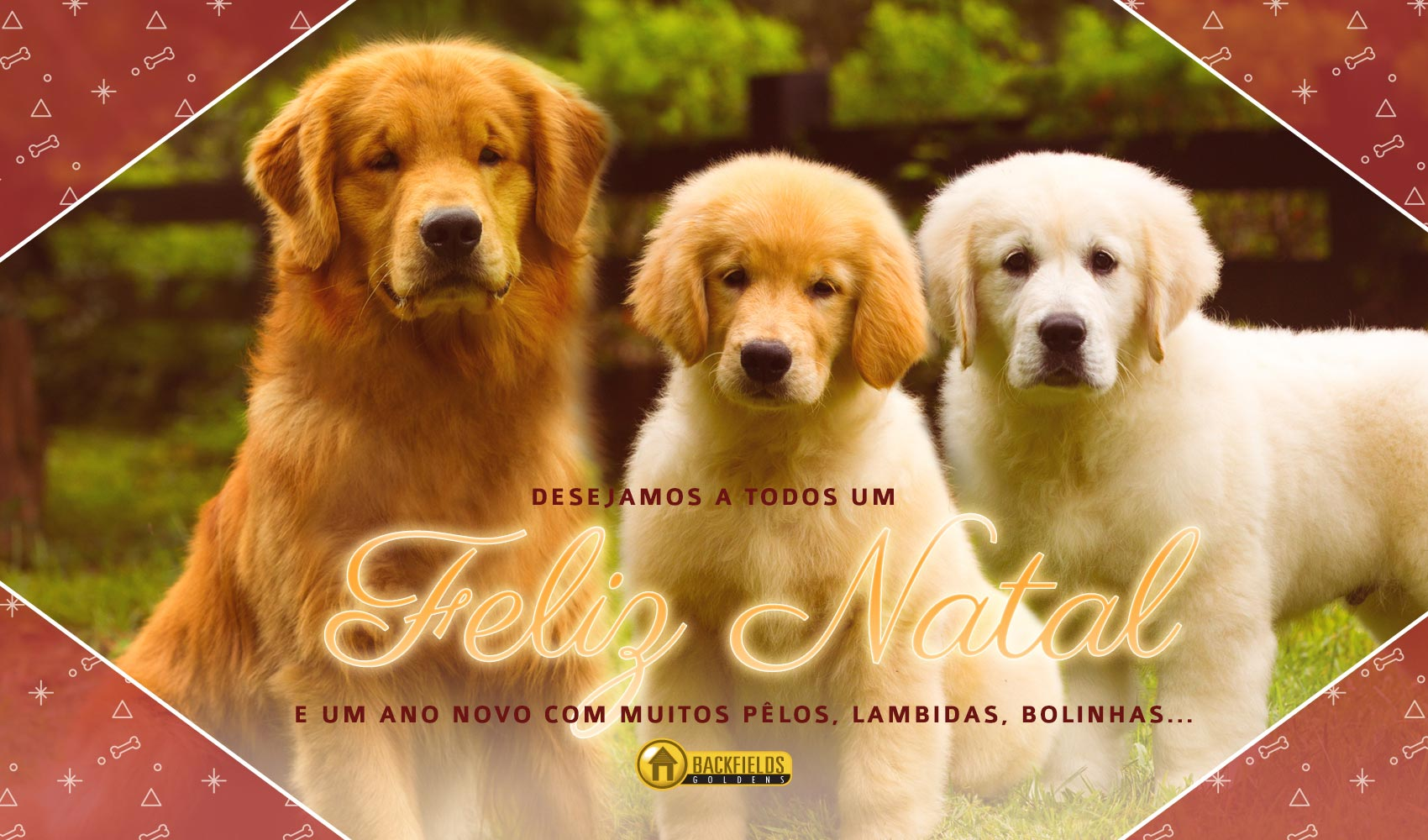 Backfields Goldens Feliz Natal